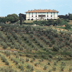 Artimino (Firenze) villa medicea con oliveto (Foto Ermes Lasagni)